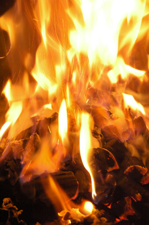 Fireplaceseries2bycx_ed599888_54-med