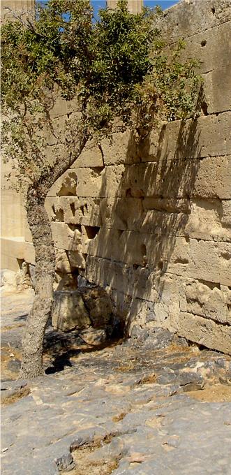 Rhodes-LindosAcropolisbypitklad6-med crop