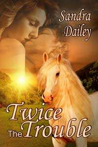 Twice the Trouble, a contemporary romance by Sandra Dailey