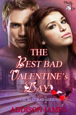 The Best Bad Valentine's Day, a romantic comedy by Addison James
