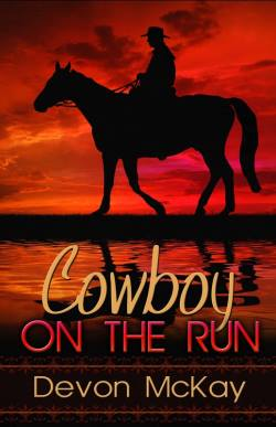 Cowboy on the Run, a contemporary western romance by Devon McKay