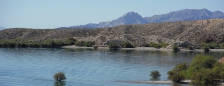 Morning at Lake Mohave, photo copyright Babette James