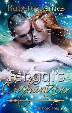 Fergal's Enchantress, a fantasy romance novella by Babette James