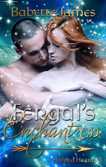 Fergal's Enchantress, a fantasy romance novella by Babette James
